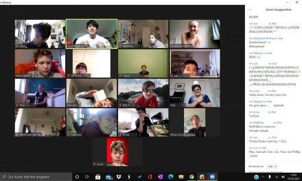 Die Kindergruppe des Clubs beim Training per Videokonferenz